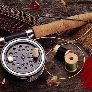 Охотничьи и рыболовные магазины Евлашево