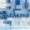 Выставки в Евлашево