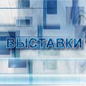 Выставки Евлашево